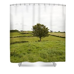 Fairy Tree In Ireland Shower Curtain by Ian Middleton