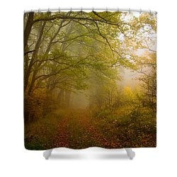 Fairy Wood Shower Curtain by Evgeni Dinev