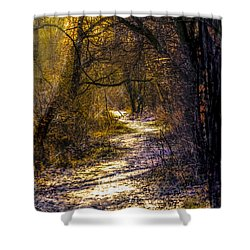 Fairy Woods Artistic  Shower Curtain by Leif Sohlman