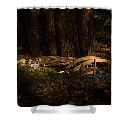 Fairy World Shower Curtain by Jay Stockhaus