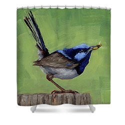 Fairy Wren With Lunch  Shower Curtain by Margaret Stockdale