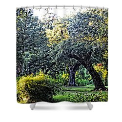 Shower Curtain featuring the photograph Fairytale Forest by Maggy Marsh