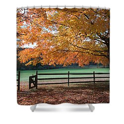 Fal Foliage And Fence Shower Curtain