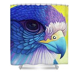 Falcon Medicine Shower Curtain