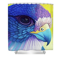 Falcon Medicine Shower Curtain