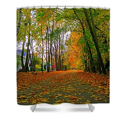 Fall Afternoon On The Rail Trail Shower Curtain