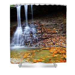 Fall At Blue Hen Falls Shower Curtain
