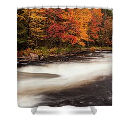 Fall At Oxtongue Rapids Shower Curtain
