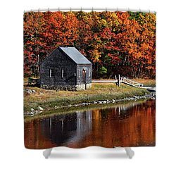 Fall At Rye Shower Curtain by Tricia Marchlik