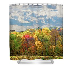 Shower Curtain featuring the photograph Fall At Shaw by David Coblitz