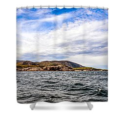 Shower Curtain featuring the photograph Fall At Somes Sound by Anthony Baatz
