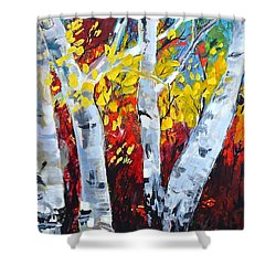 Fall Birch Trees Shower Curtain