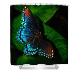 Fall Butterfly Shower Curtain