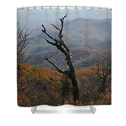 Fall Shower Curtain by Cathy Harper