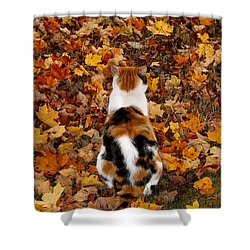Fall Catitude  Shower Curtain