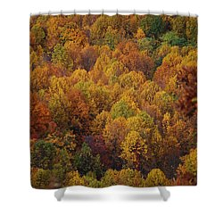 Fall Cluster Shower Curtain by Eric Liller
