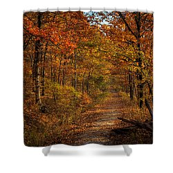 Shower Curtain featuring the photograph Fall Color At Centerpoint Trailhead by Michael Dougherty
