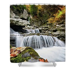 Fall Color Bash Shower Curtain