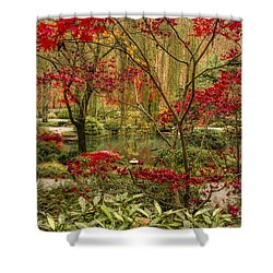 Fall Color In The Japanese Gardens Shower Curtain