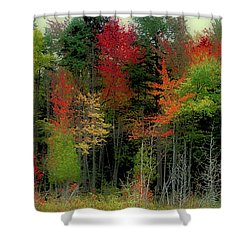 Shower Curtain featuring the photograph Fall Color Panorama by David Patterson