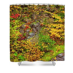 Fall Color Patchwork Shower Curtain