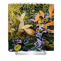 Fall Color Soup Shower Curtain by Deborah  Crew-Johnson