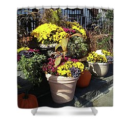 Shower Curtain featuring the photograph Fall Colorful Gifts  by Irina Sztukowski