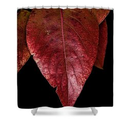 Shower Curtain featuring the photograph Fall Colors 3 by James Sage