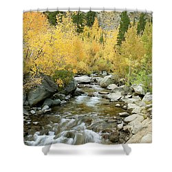 Fall Colors And Rushing Stream - Eastern Sierra California Shower Curtain by Ram Vasudev