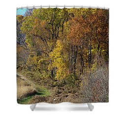 Fall Colors As Oil Shower Curtain