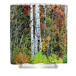 Shower Curtain featuring the photograph Fall Colors by Bryan Carter