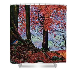 Fall Colors II Shower Curtain