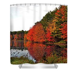 Fall Colors In Madbury Nh Shower Curtain by Nancy Landry