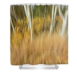 Fall Colors In Motion Shower Curtain