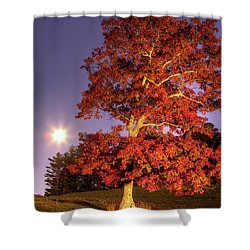 Fall Colors Moonrise In The Blue Ridge Shower Curtain by Dan Carmichael