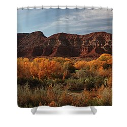 Fall Colors Near Zion Shower Curtain