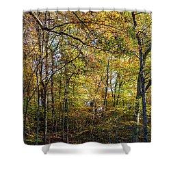 Fall Colors Of Rock Creek Park Shower Curtain