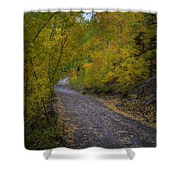Fall Colors On Engineer Pass Shower Curtain