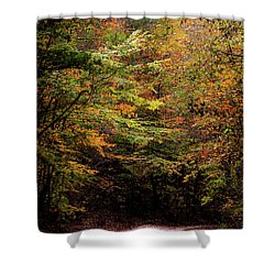 Shower Curtain featuring the photograph Fall Colors On The Trail by Shelby Young