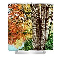 Fall Colors Reflecting In A Blue Ridge Lake Ap Shower Curtain