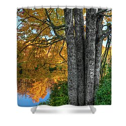 Fall Colors Reflecting In A Blue Ridge Lake Shower Curtain by Dan Carmichael