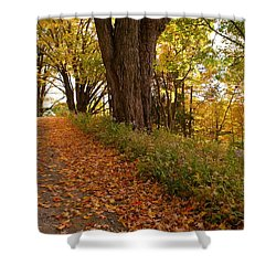 Fall Driveway Shower Curtain by Lois Lepisto