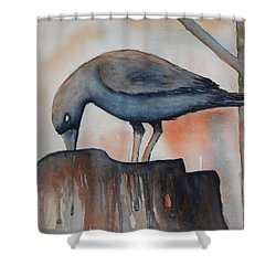 Fall Feeding Shower Curtain