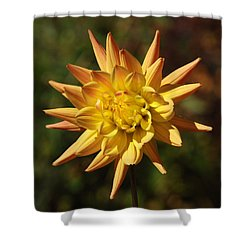 Shower Curtain featuring the photograph Fall Flower by Richard Bryce and Family