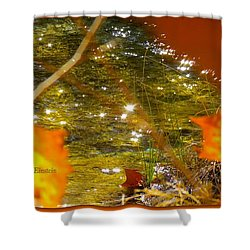 Fall Flyer Shower Curtain