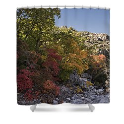 Fall Foliage In The Guadalupes Shower Curtain by Melany Sarafis