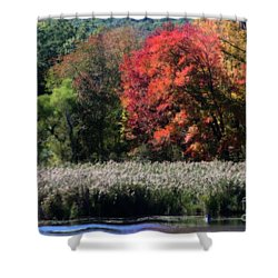 Shower Curtain featuring the photograph Fall Foliage Marsh by Smilin Eyes  Treasures