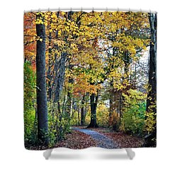 Fall Foliage Shower Curtain by Mikki Cucuzzo