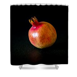 Fall Fruits Shower Curtain