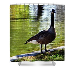 Fall Goose Shower Curtain